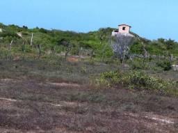 Atins - Barreirinhas - Maranhão: Casa Vender