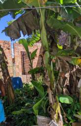 Terreno espaçoso com casa semi-construida!