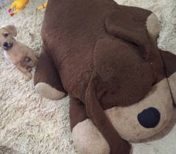Urso grande de pelúcia