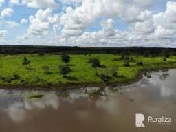 Fazenda para pecuaristas na região de Formoso do Araguaia