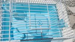 Gaiola para hamster azul