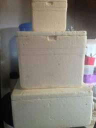 Caixa de isopor