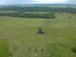 Fazenda localizada na zona rural da cidade de ji-parana/RO