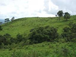 Fazenda com 41 alqueires em Ortigueira-Pr