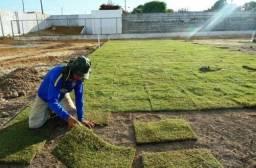 Plantio e manutenção de jardins e gramados