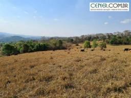 1883/Excelente fazenda de 133,5 ha para café, lavoura ou pecuária em Carmo da Mata