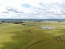 Fazenda de 2100 hectares no Bonfim/RR, ler descrição do anuncio