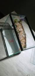 Aquaterrario 10 L