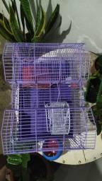 Gaiola para roedor