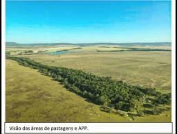 Nova Brasilândia MT Fazenda 24.900 Hectares R$ 250.000.000,00 Cód.FMT-30