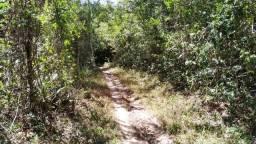 Terrenos em aratuba a partir de 1 hectare
