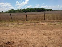 Fazenda 240 alqueires em Formoso do Araguaia