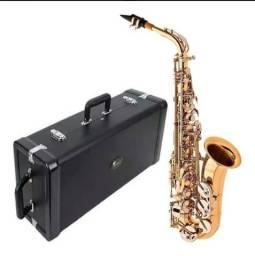 Saxofone alto eagle Eb