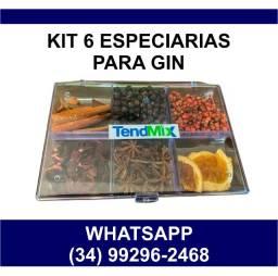 Kit Gin com 6 especiarias Gin Tônica * Entrega Grátis