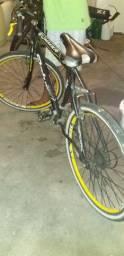 bicicleta Status Summer