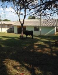 2 casas em Ponta Grossa PR