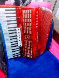 Vendo acordeon toda em perfeito estado