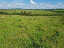Fazenda Bela Vista - 150ha - Três Pontas MG