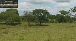 Terreno em Pitangui sentido Martinho Campos ótima topografia 42 hectares
