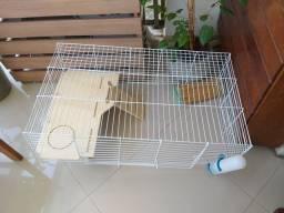 Gaiola roedores porquinho da Índia hamster