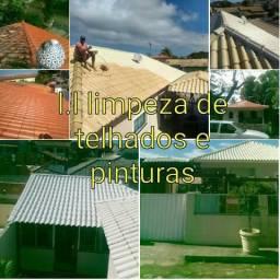 LÉO LIMPEZA E PINTURAS DE TELHADOS EM GERAL
