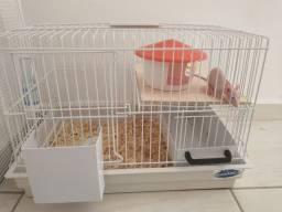 Vendo rato Twister de estimação