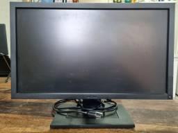 Monitor Dell 22 polegadas 100-240V