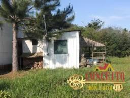 Sítio com 1.400m², casa simples, situada à 1Km da RS 040 - 50% de entrada