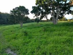 Fazenda em mundo Novo e outra em tapiramuta