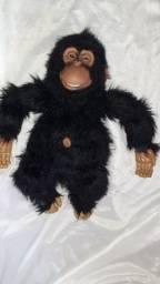 Macaco antigo senario