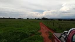 Fazenda de Dupla Aptidão em Ituiutaba/MG - 35 alqueirões ou 169há
