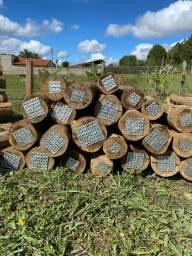 Palanques de eucalipto tratado