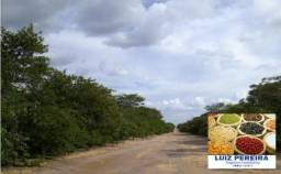 FAZENDA CANTO DO BURITI - PI (Agroindustria e Fruticultura)