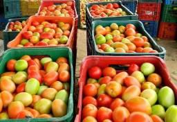 Vendo Verduras, Frutas e Legumes