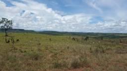 DjuE 377-Belíssima fazenda 154 ha em Sto Antonio do Descoberto