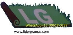Gramas esmeralda em promoção R$ 3.60 metros mais frets