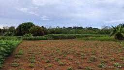 Vendo Lote de 23 Hectares Com cascalheira Localizado na Estrada do Jatuarana, BR 319.