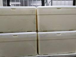 Caixa de isopor isofort.