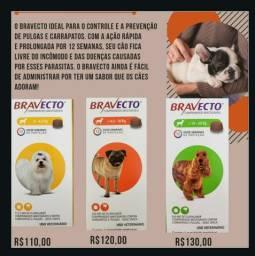 Bravecto/cachorros/pulgas/carrapatos