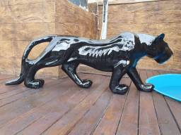 Jaguar Maravilhoso