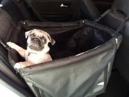 Quer transportar seu pet com segurança?