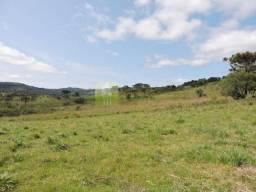 50 hectares ideal para fruticultura em São Joaquim-SC