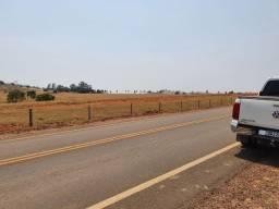 Fazenda 30 Alqueires | Pra lavoura | 100 km Goiânia | beira rodovia
