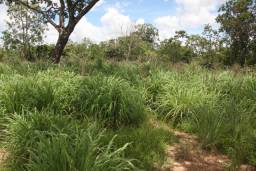 Terreno de 32 hectares em Curvelo