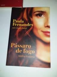 Biografia Paula Fernandes
