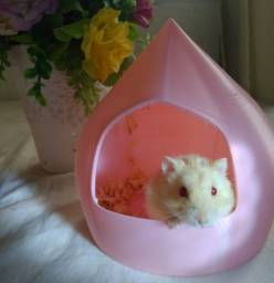 Casinha ninho toca hamsters