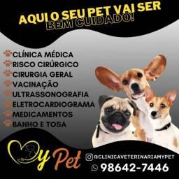 Cirurgia para seu pet- cachorro - felinos - dog