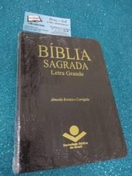 Biblias sagrada e estudo