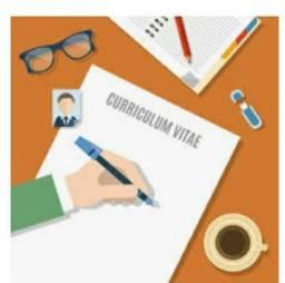 Elaboração e revisão de currículos