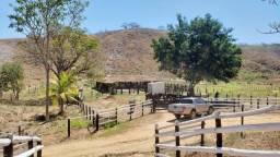Fazenda 16.5 Alqueires - Governador Valadares/MG